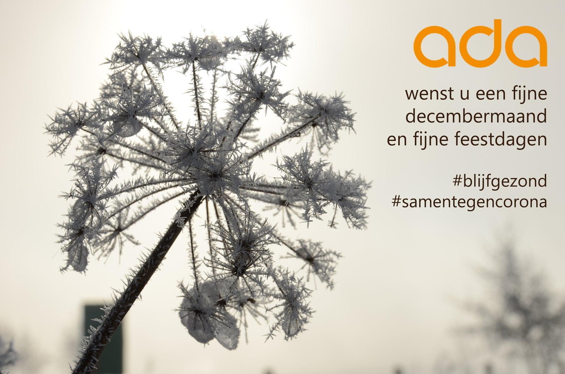 Fijne decembermaand en ...